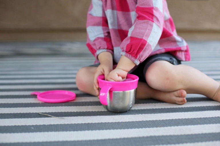 BEST SNACK CATCHERS FOR TODDLERS